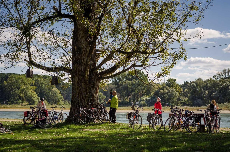 Bécs-Pozsony egynapos kerékpártúra Magyarország, Ausztria #60963e0d-0589-4408-9606-969f8d192c8c