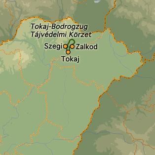 Vízitúra a Bodrog árterében és a Tiszán Szegi-Zalkod-Tokaj #mapImageWidget